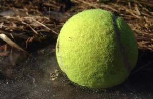 Iced T Ball