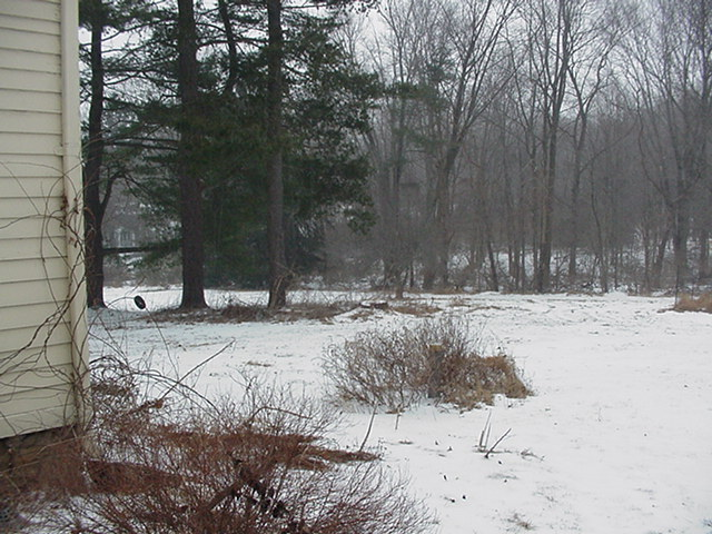20070214snownewhouse003