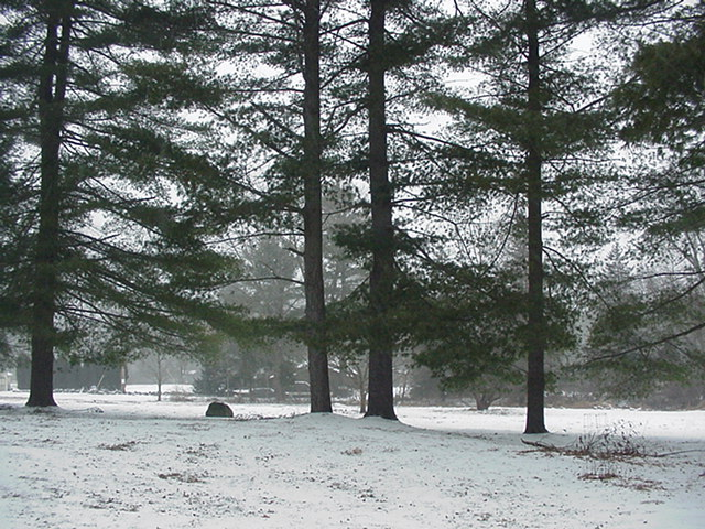 20070214snownewhouse004