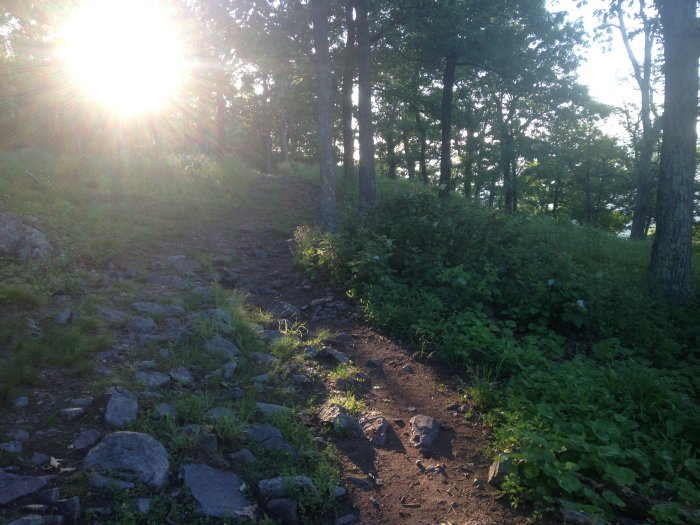 The morning sun over the terminus of the blue blaze trail on the summit of Mt. Tammany (is that a skull on the trail??)